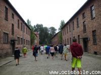 Viaje Polonia 2014. Ociobaile. Bailes de Salón Zumba®. Segovia 401