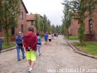 Viaje Polonia 2014. Ociobaile. Bailes de Salón Zumba®. Segovia 417