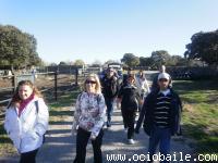 01. Ortigosa del Monte 24-10-2010..